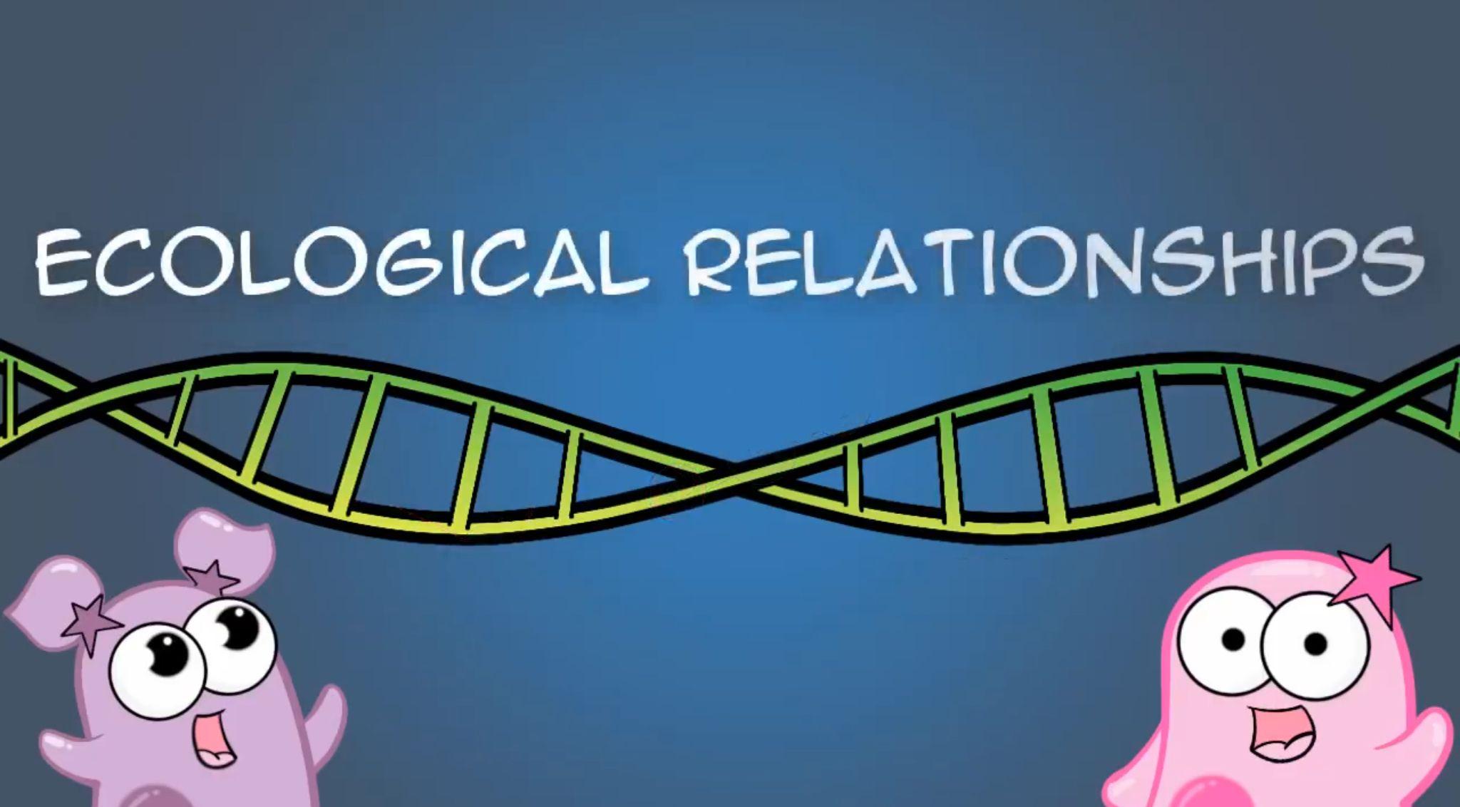 Ecological Relationships Amoeba Sisters Video Tuesday