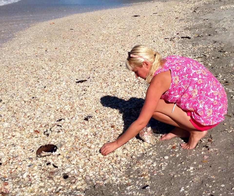 Shelling on Sanibel Island | Sanibel island, Beach look ...
