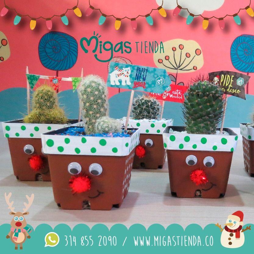 es hora de que los cactus absorban las malas energas un cactus tambin es un