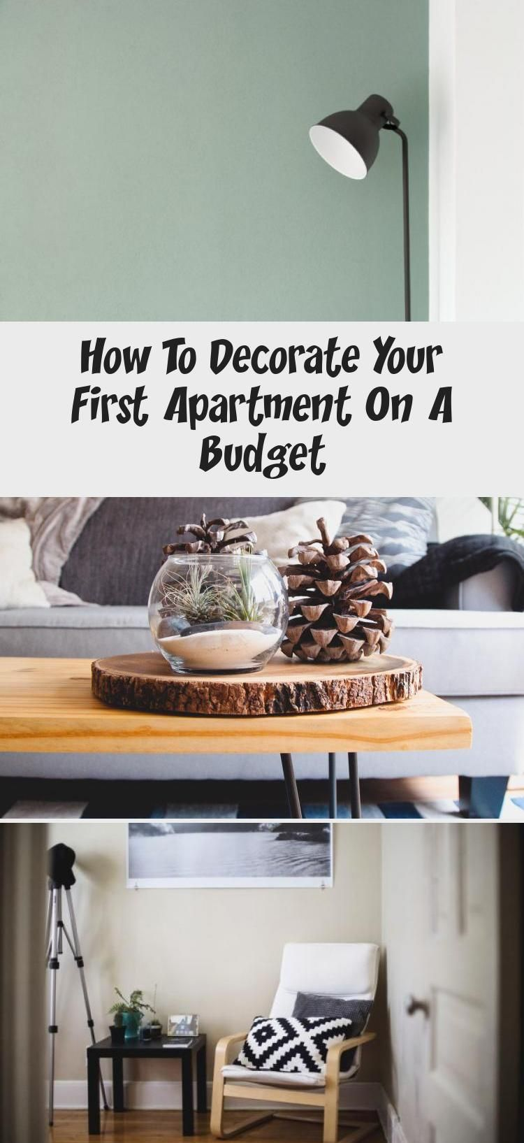 How To Decorate Your First Apartment On A Budget In 2020 With