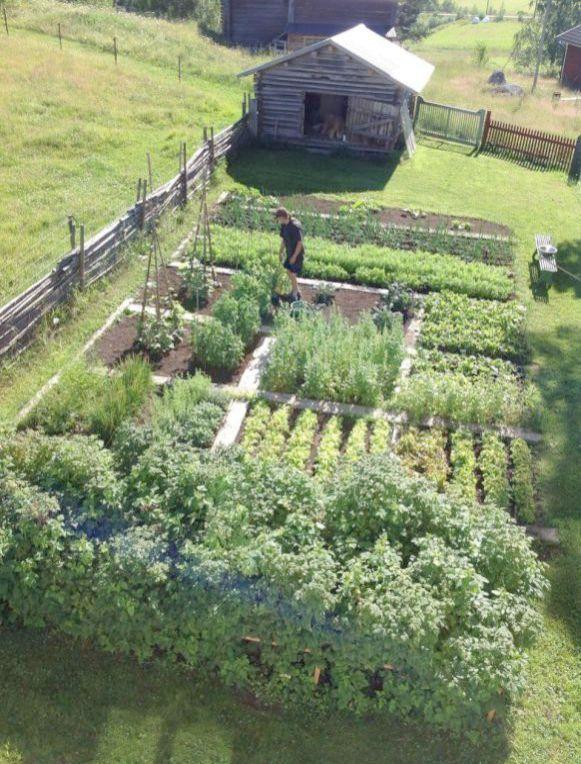 Fine Gardening Landscape Design little Diy Garden ...