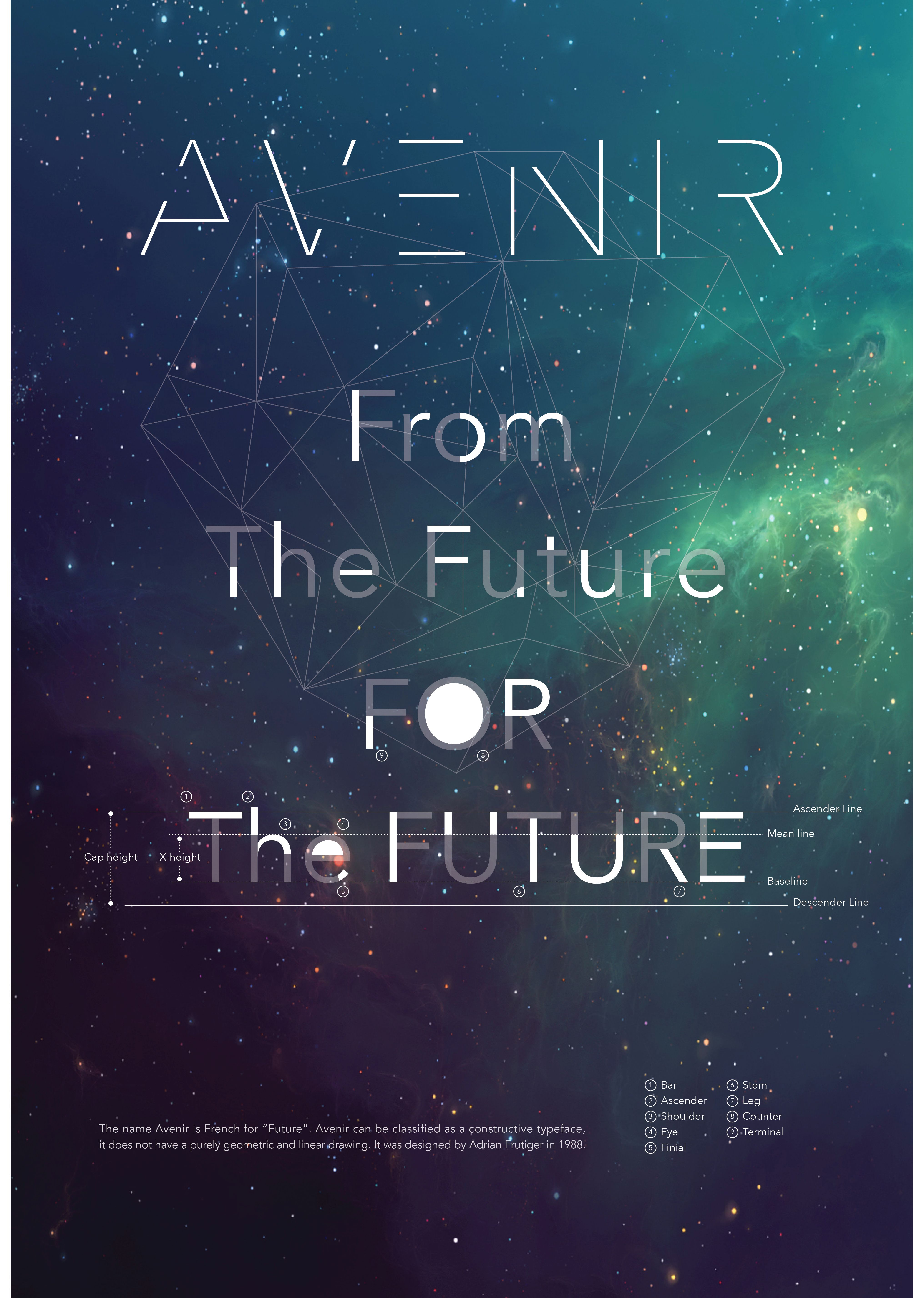 avenir anatomy poster typography poster pinterest anatomy type posters and typography