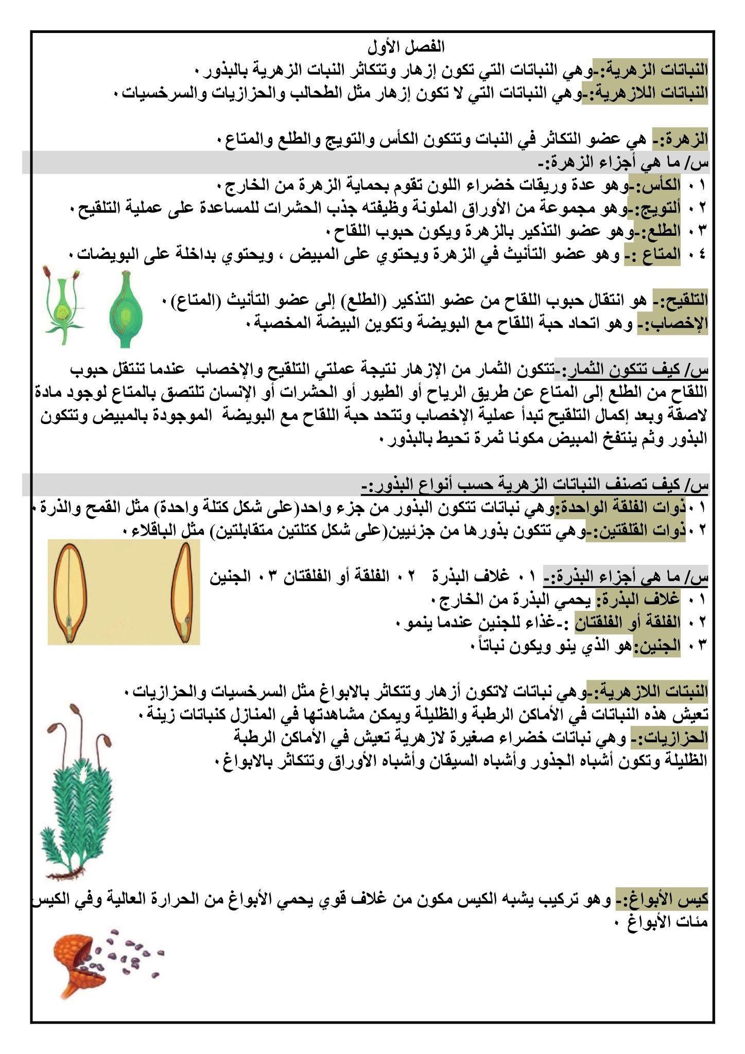 اوراق ملخص الفصل الاول علوم خامس ابتدائي على شكل سؤال وجواب اهلا بكم متابعي موقع وقناة الاستاذ احمد مهدي شلال في هذا الموضوع سنعرض لكم Blog Posts Blog Post