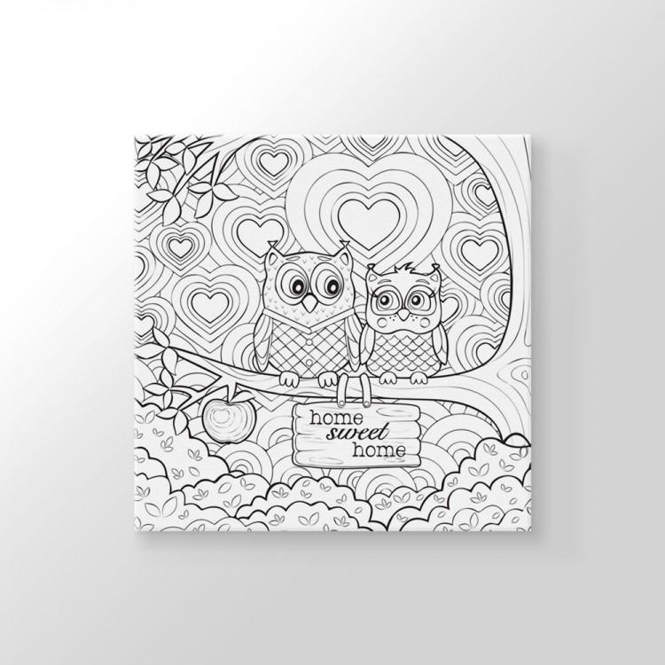 Baykuslar Boyama Tablo Baykus Tablolar Kanvaslar