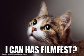 The Oakcatvidfest Is Back This Year On May 10 2014 This Cat Lovers Festival Will Screen The Best Cat Vi Best Cat Gifs Funny Cat Memes Kittens Funny