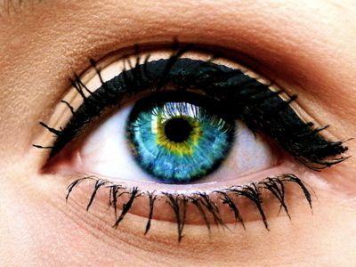 eye color   Estilos delineador, Ideias de maquiagem, Olhos maravilhosos