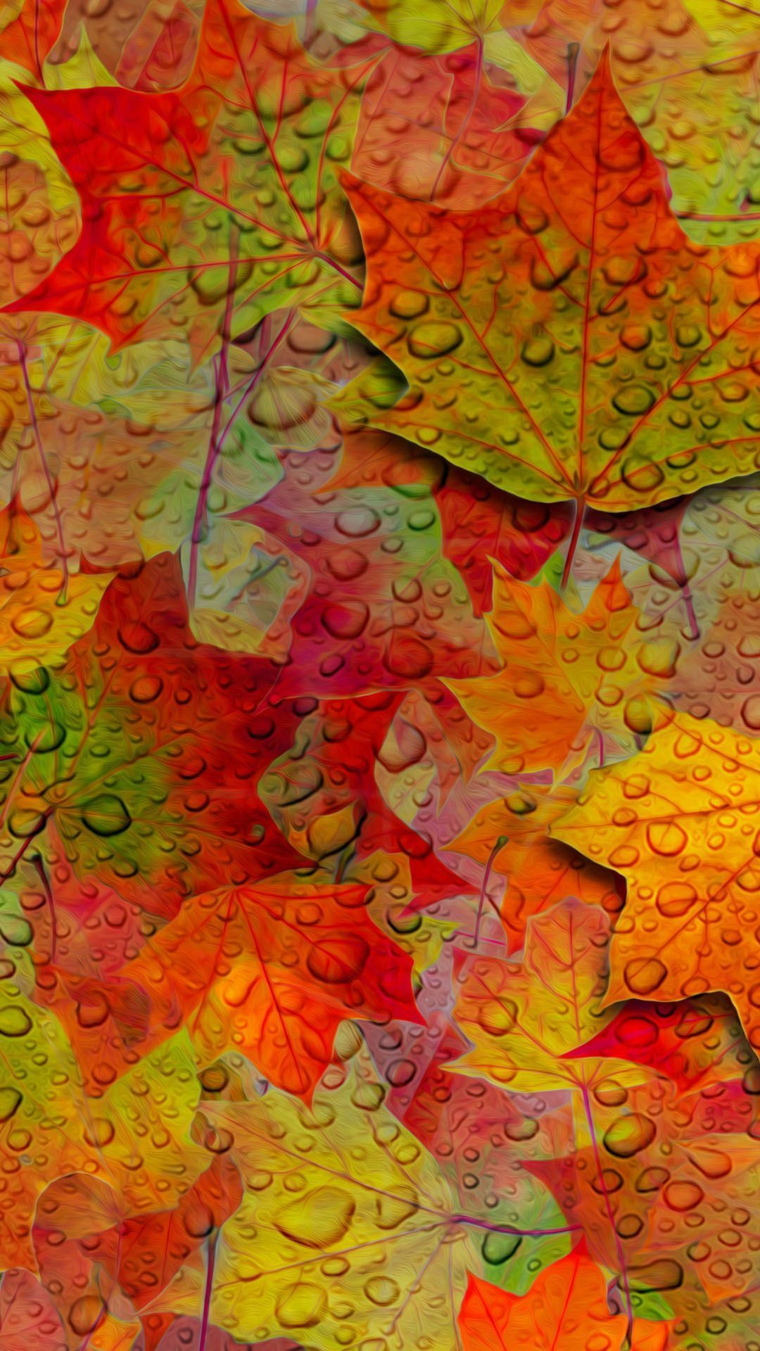 Fall Leaves Wallpaper For Android Fall Wallpaper Autumn Leaves Wallpaper Free Fall Wallpaper