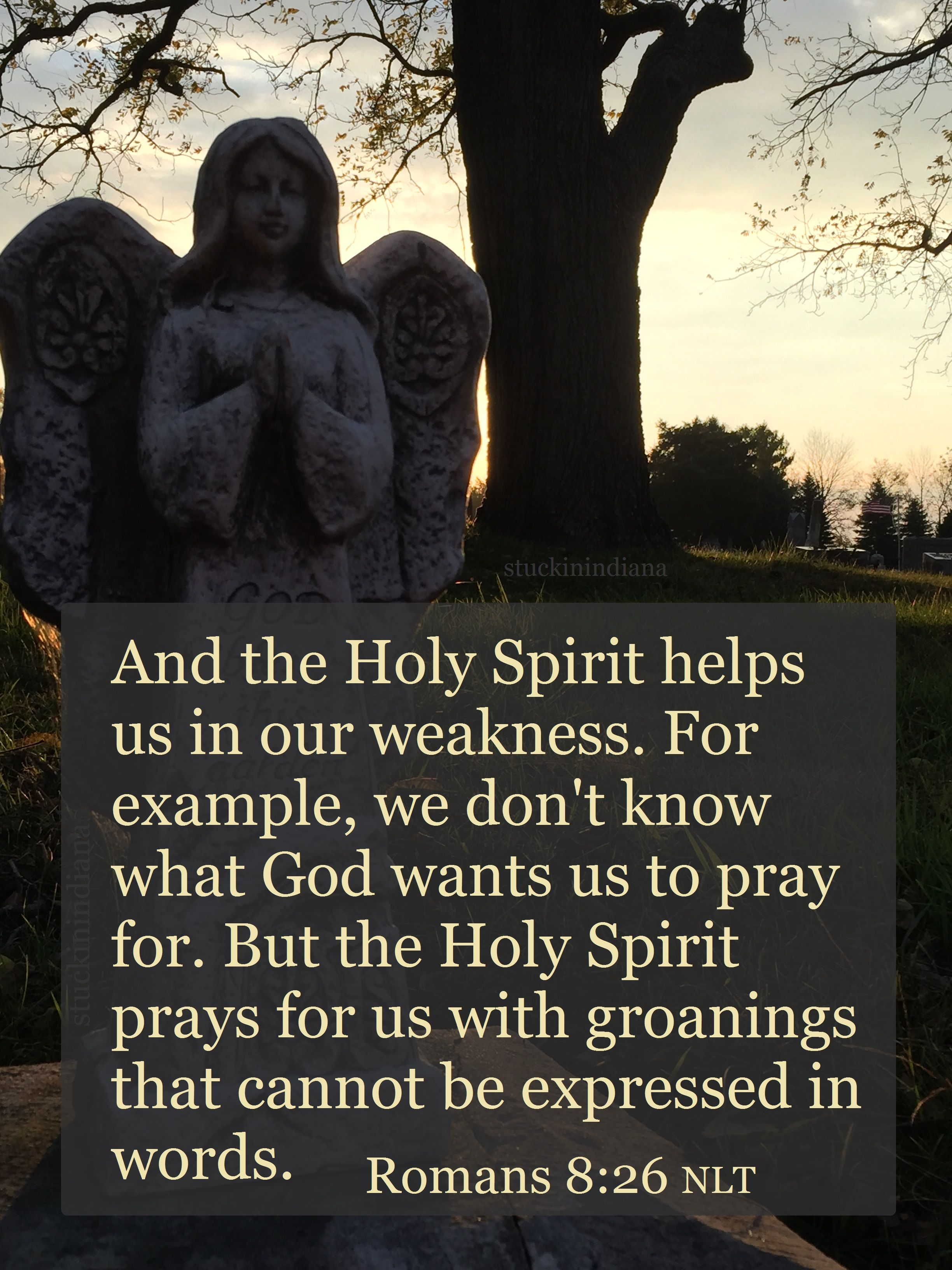 and the holy spirit helps us in our weakness for example we don and the holy spirit helps us in our weakness for example we don