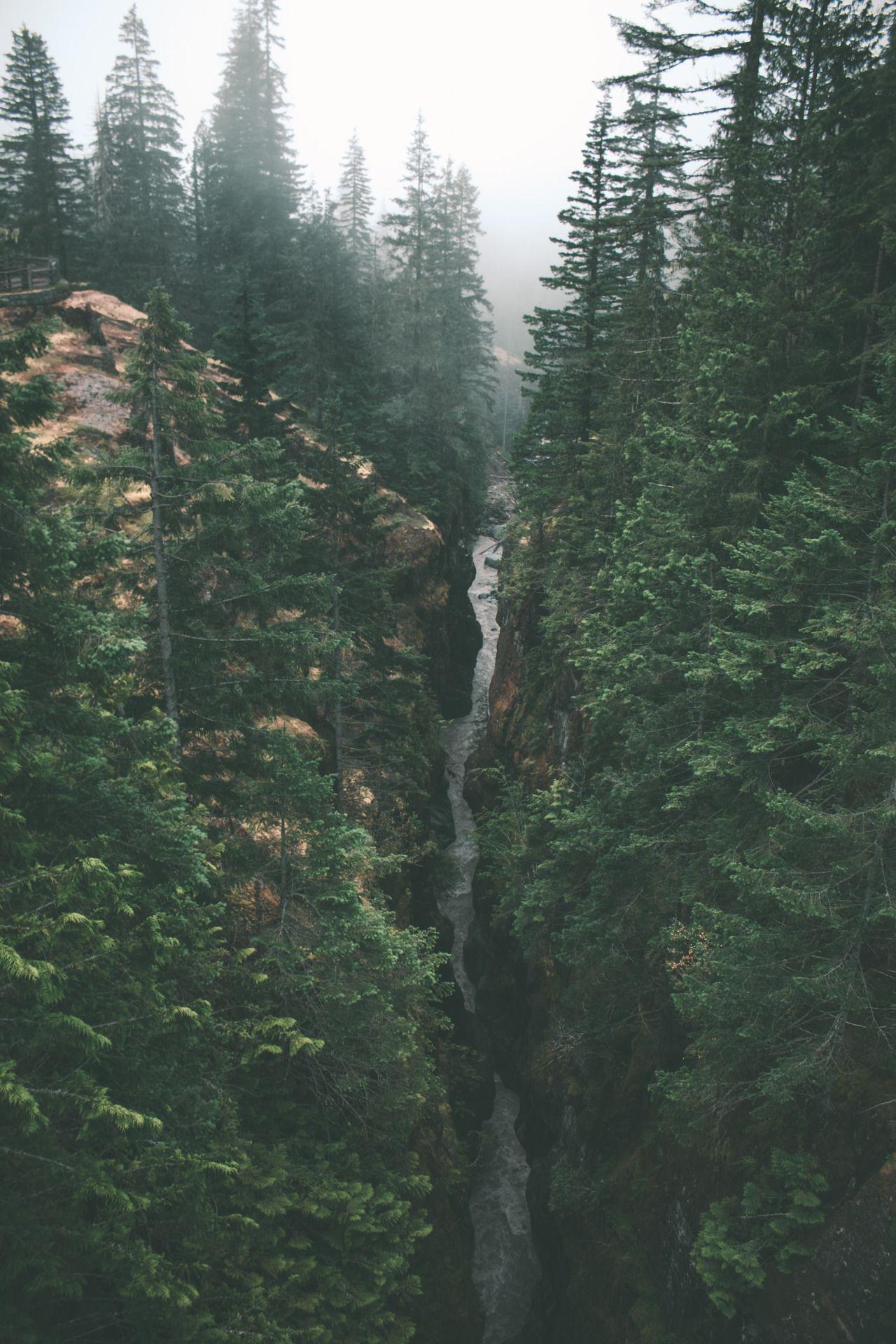 "hannahkemp: "" Box Canyon//Washington July 2016 """