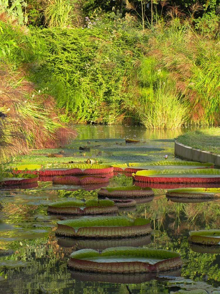 Le Jardin Des Martels En Automne Jardins Du Monde Jardins