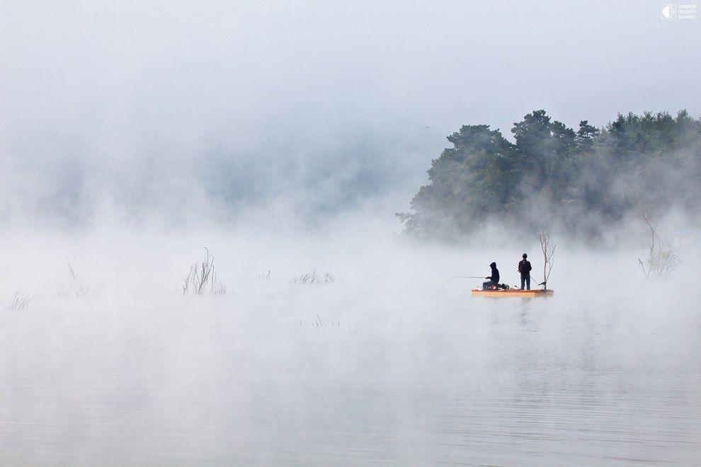 Ежик в тумане поздравления