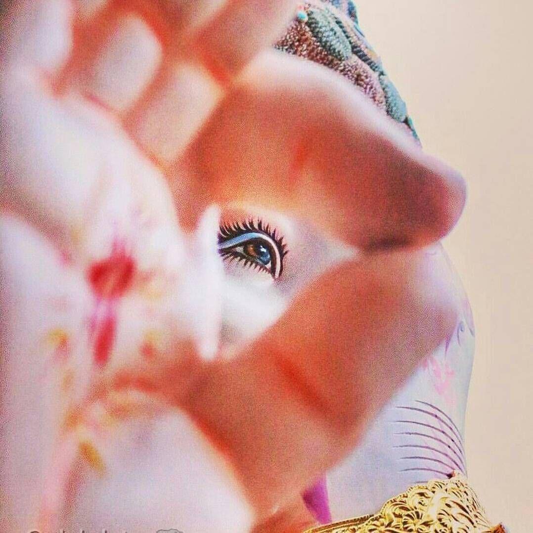 happynewyear2017 vijayadashami wallpapers and images download free