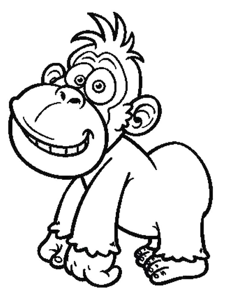 Baby Gorilla Animal coloring pages, Art pages, Coloring