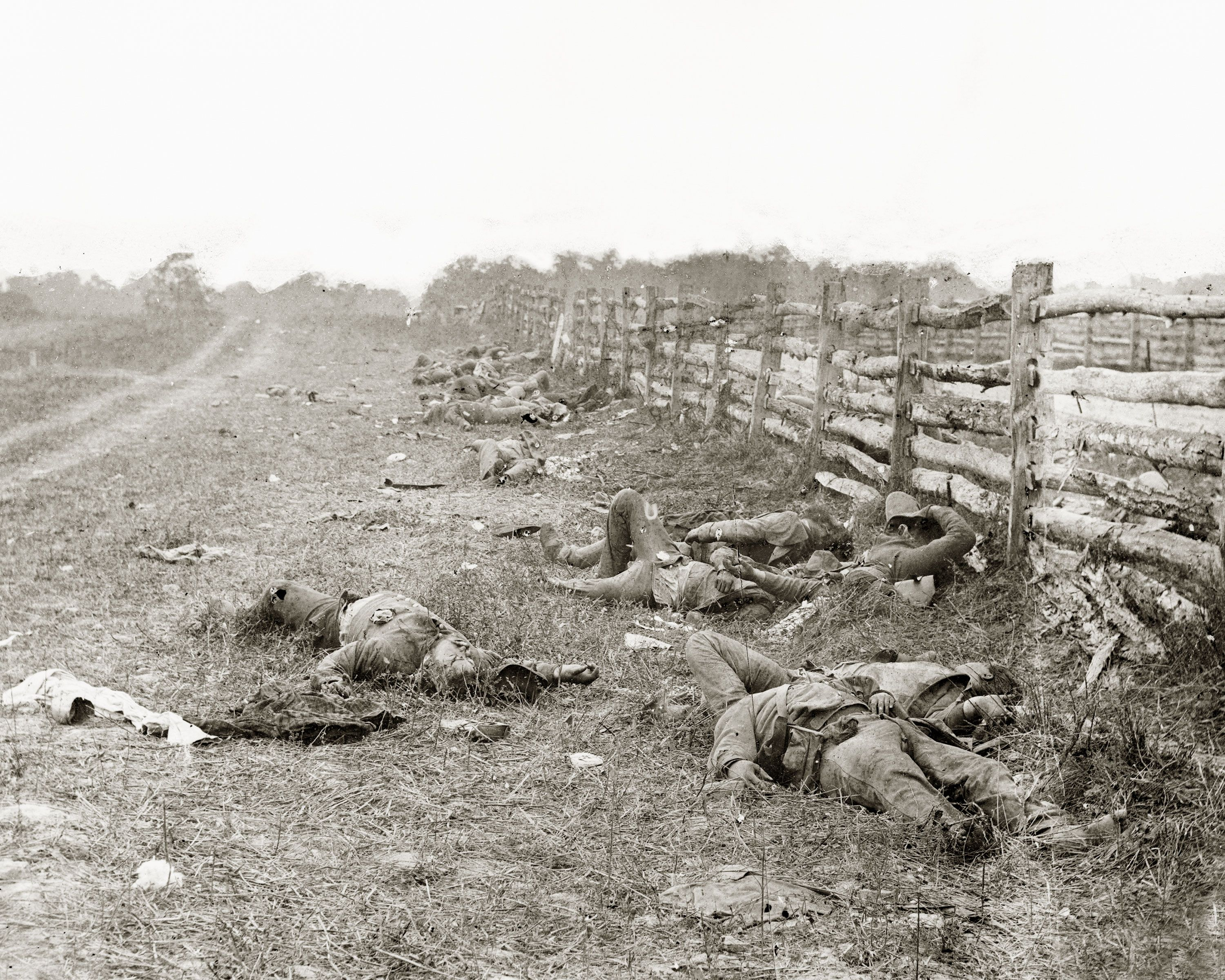 Image result for confederate bodies along hagerstown pike