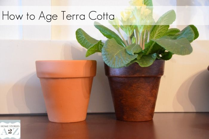 How To Easily Age Terra Cotta Pots Cotta Aging Terra Cotta Pots Terracotta Pots Painted Terra Cotta Pots