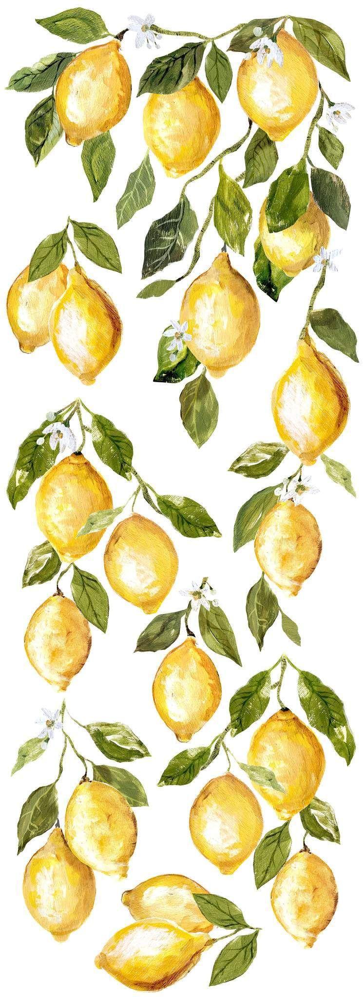 Lemon Drops Décor Transfer