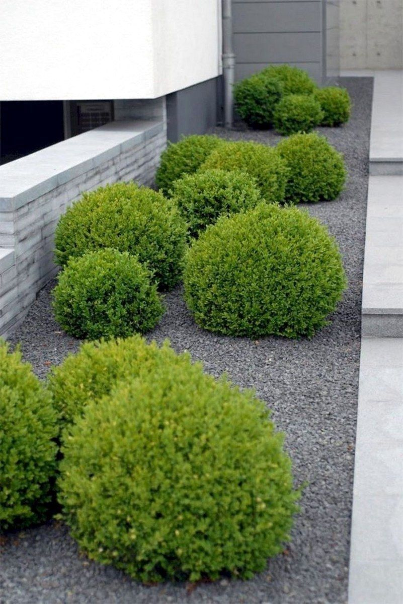 58 Beautiful Ideas For Backyard Landscaping On A Budget For You Low Maintenance Landscaping Front Yard Front Yard Landscaping Design Backyard Landscaping