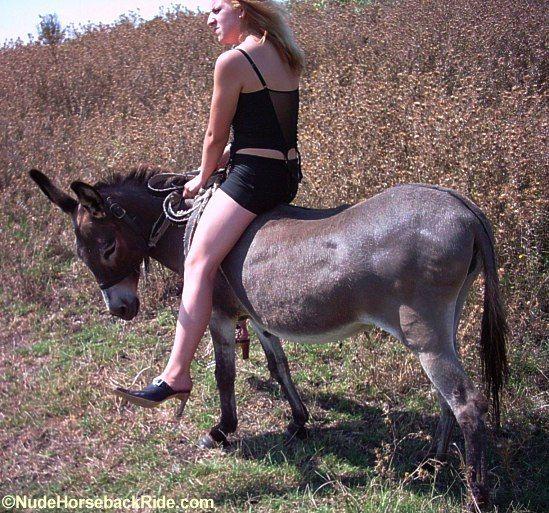 Nudehorsebackride genoscoper.com