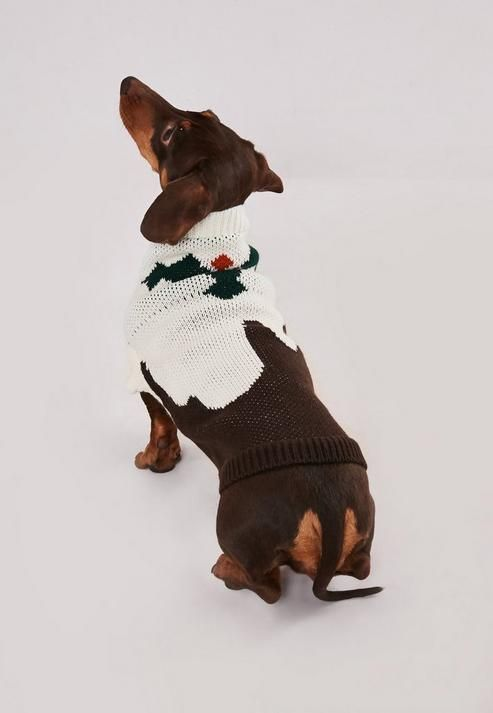 Missguided Brown Knitted Christmas Pudding Dog Jumper Dog