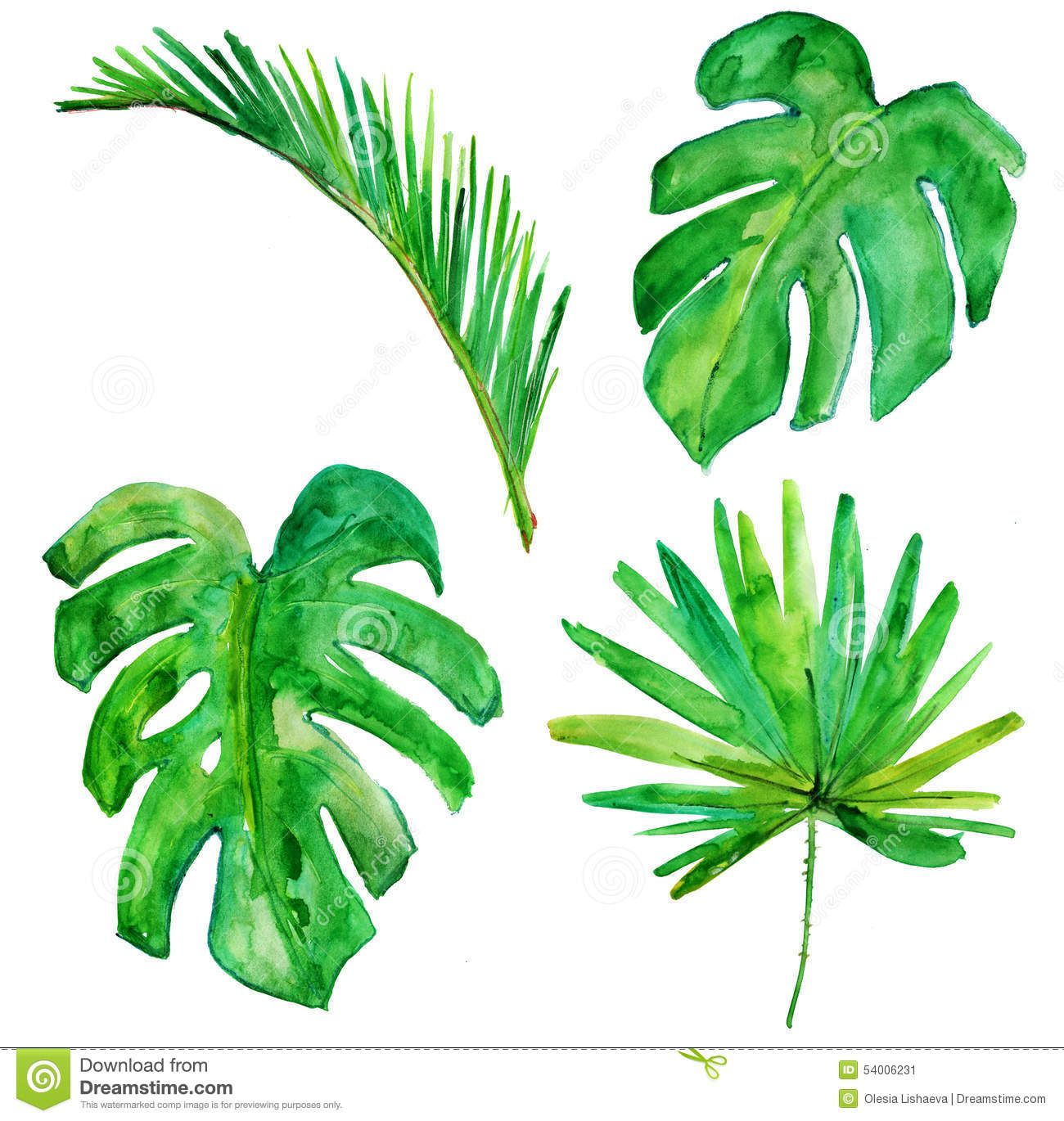Palm Tree Clipart Paint 8 Palm Tree Drawing Tree Watercolor