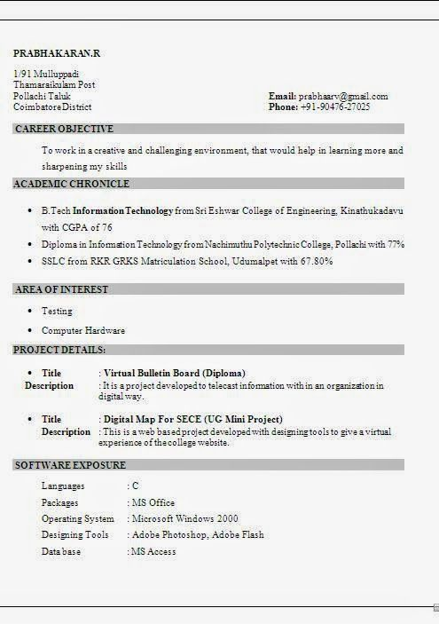 curriculum vitae academic Sample Template Example ofExcellent