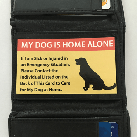Image Result For My Dog Is Home Alone Card Pet Emergency Cat Care Pet Care