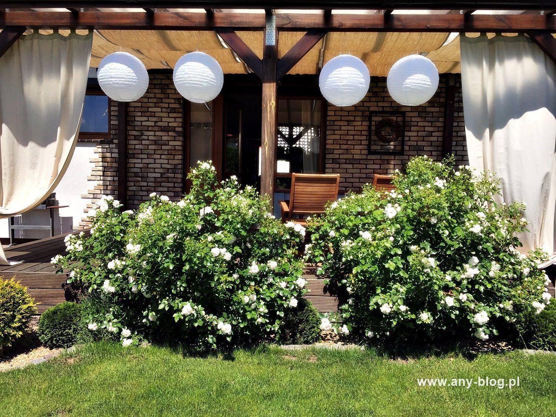 Jak Stworzyc Przytulny Taras Summer House Garden Patio Projects Garden Inspiration