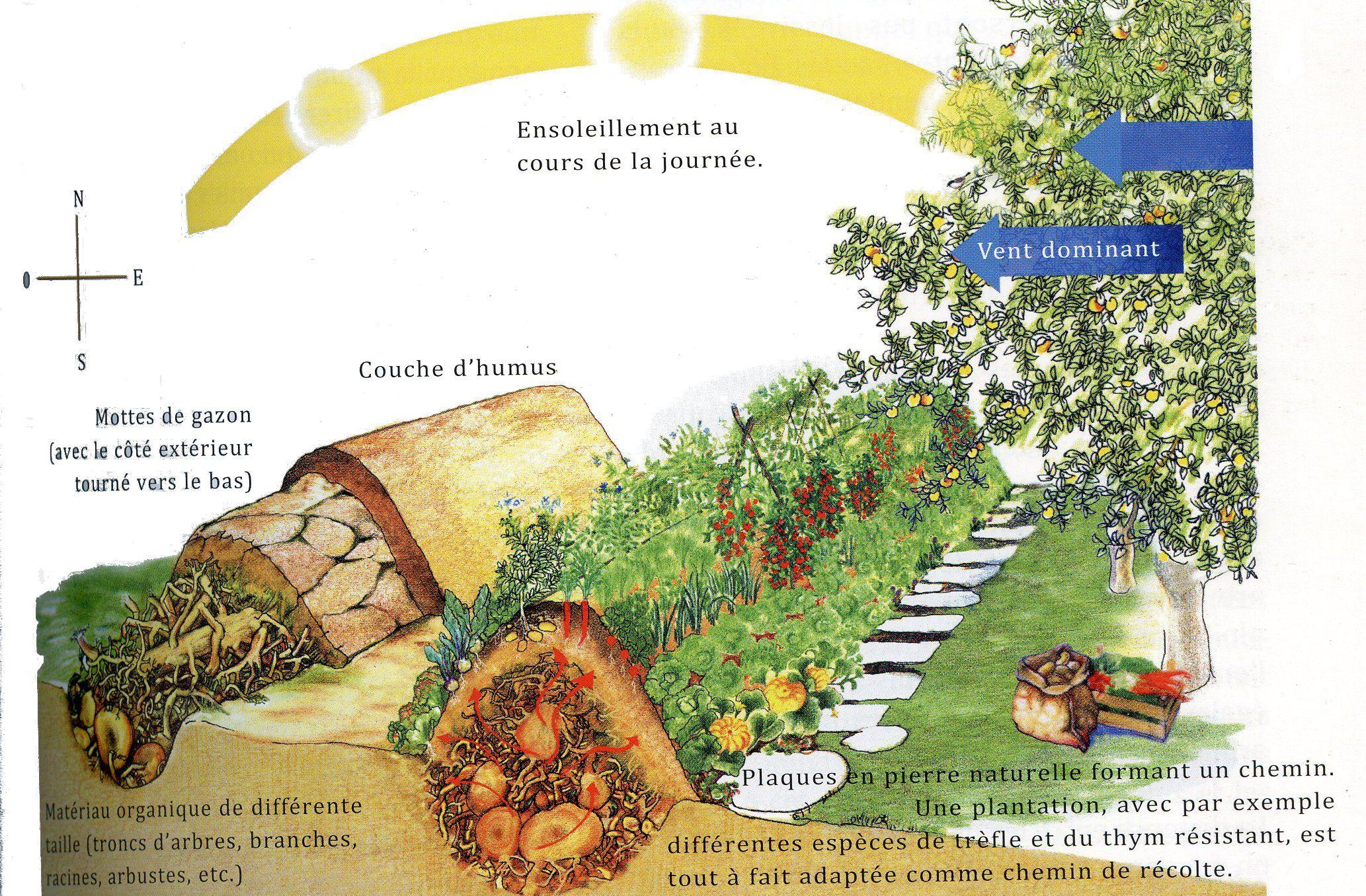 Droit Aux Buttes Systeme Aquaponique Jardins Et Incroyables