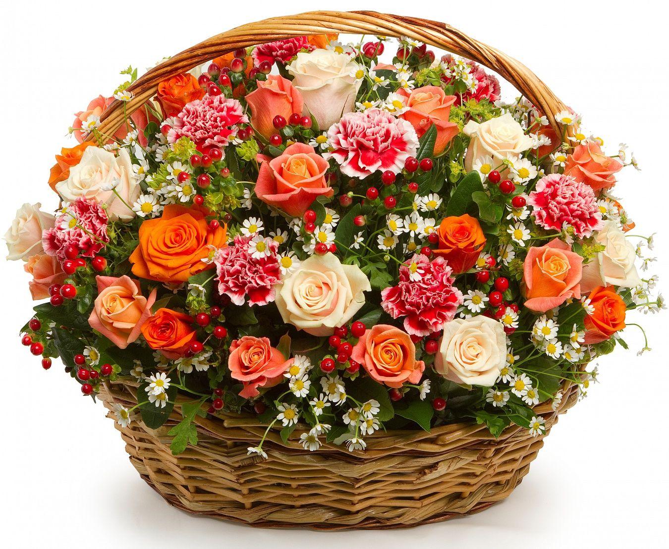 flor2u beautiful flowers izmirmasajfo