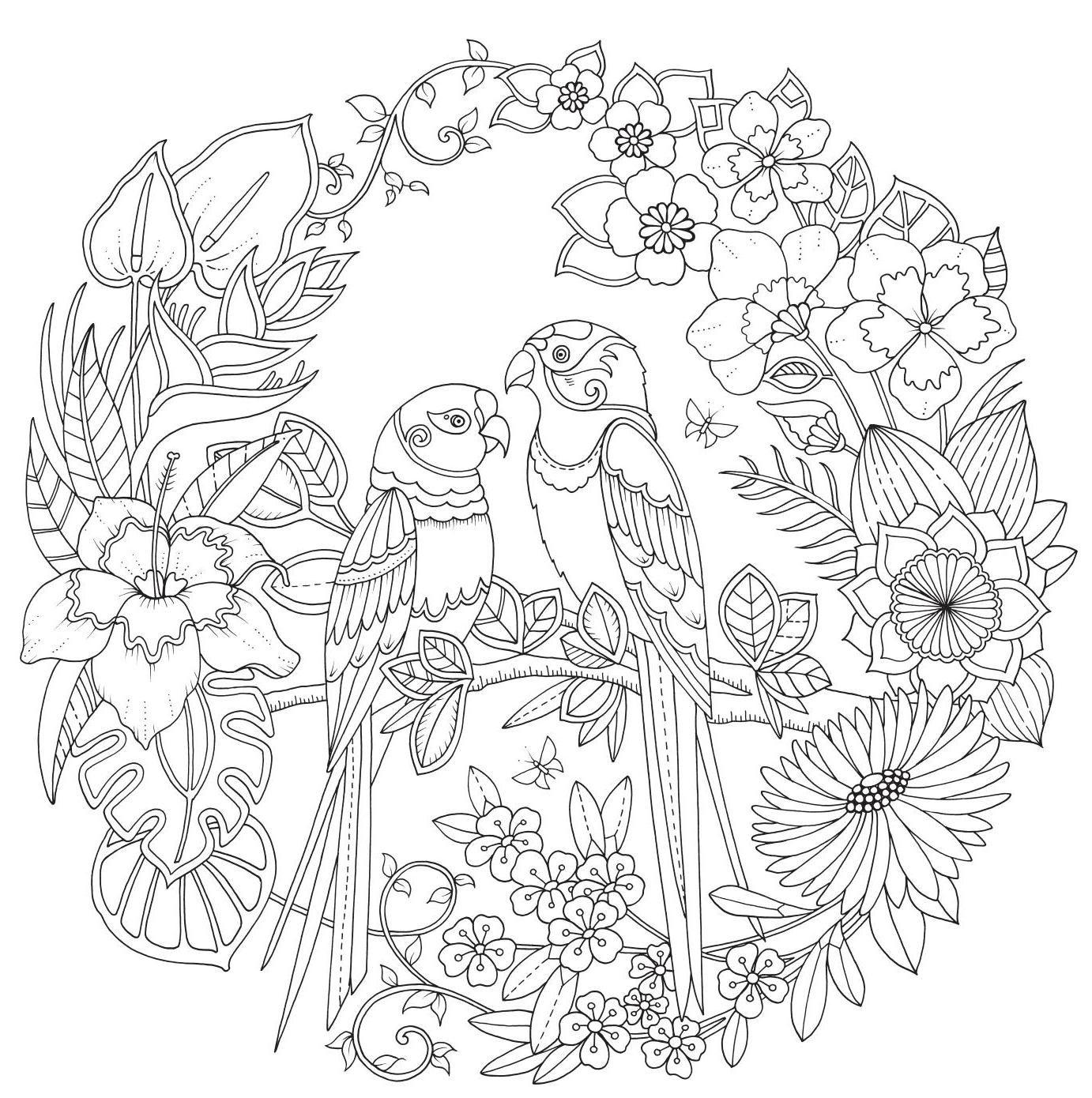 De Magie Van De Jungle Johanna Basford Mandala Kleurplaten Kleurplaten Bloem Kleurplaten