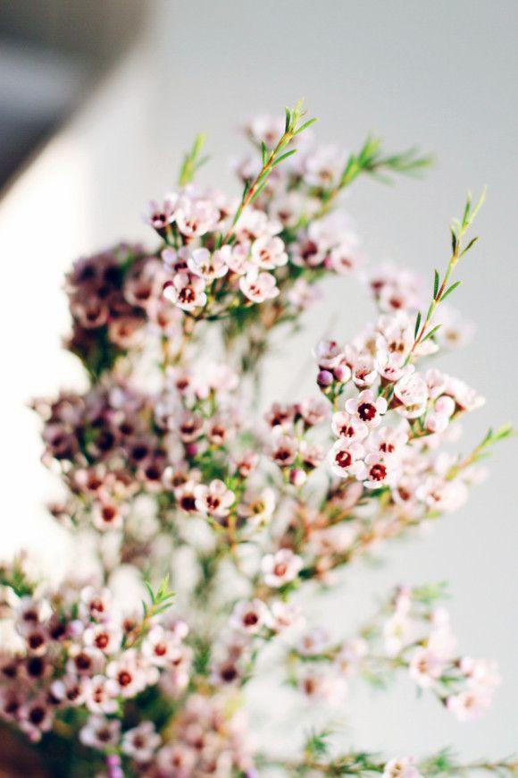 Statement Clutch - Blissful Flowers by VIDA VIDA bH4Y6v