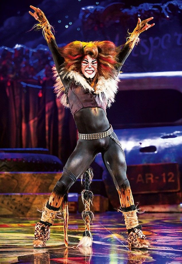 making cats musical costumes Google Search Cats the