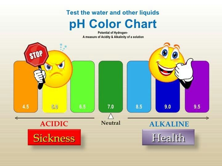 Ph Color Chart  Water    Kangen Water And Natural Health