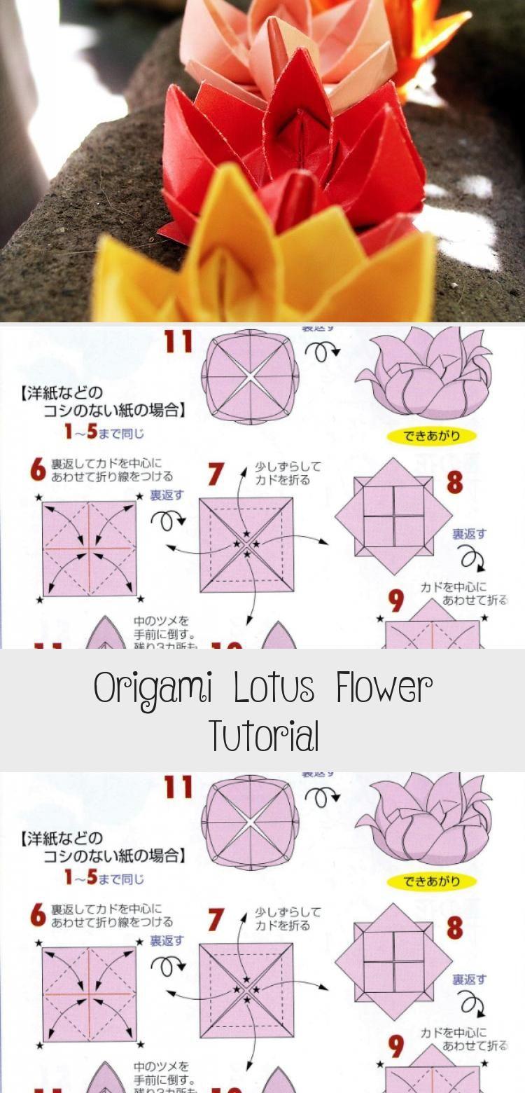 Photo of Origami Lotus Flower Tutorial via Paper Kawaii #origamiBoat #origamiStepByStep #…