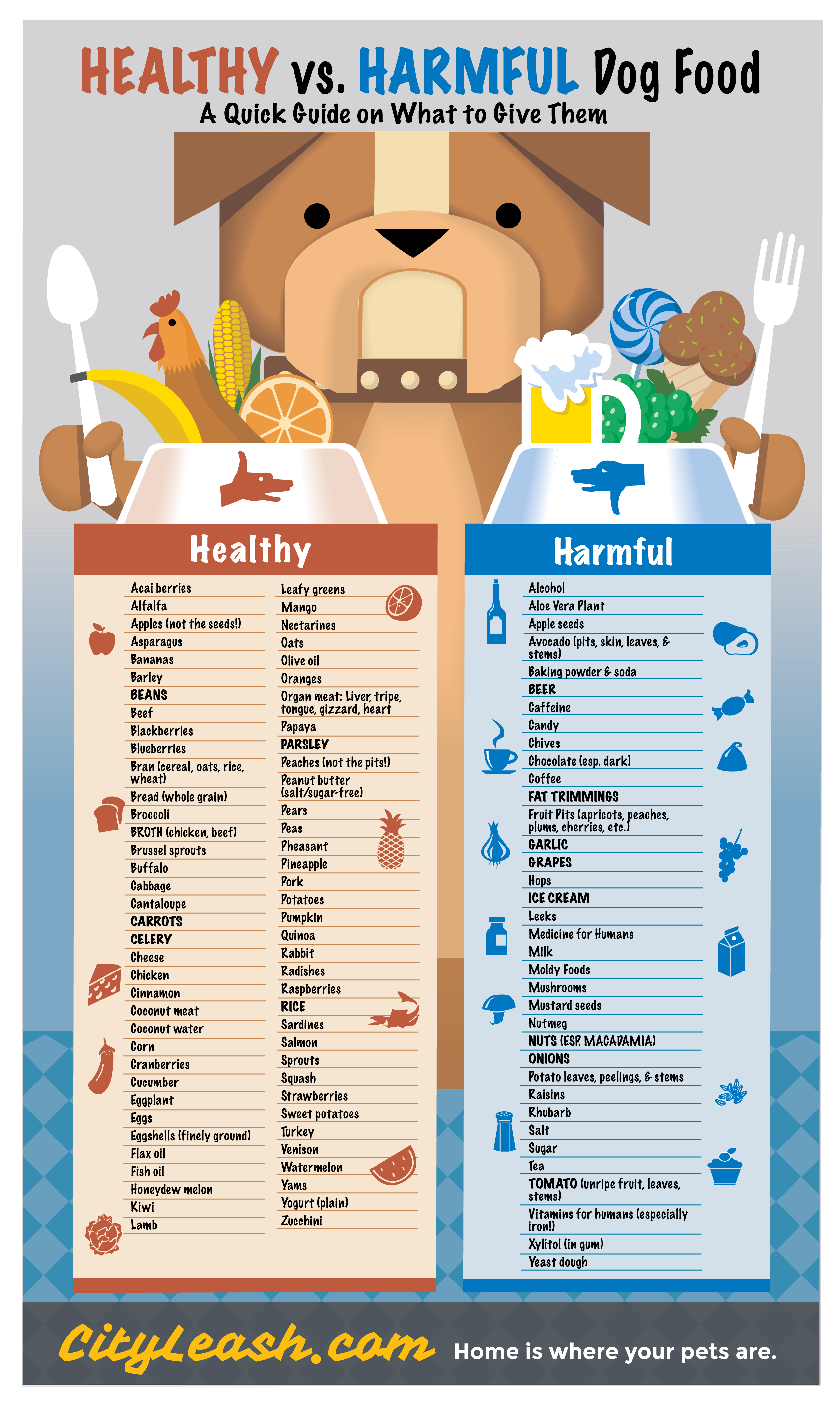 Healthy vs Harmful Food for your Dogs