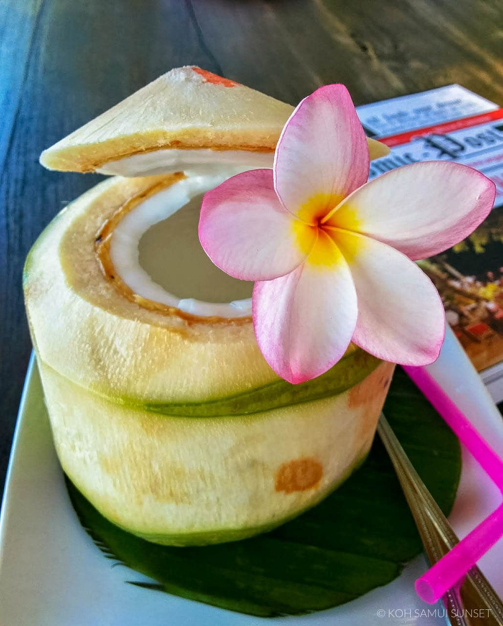 Thai Coconuts Crazy Facts And 3 Ways To Enjoy Thai Coconuts