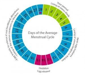 Irregular Cycle Pregnancy Calculator | Healthy HesongBai