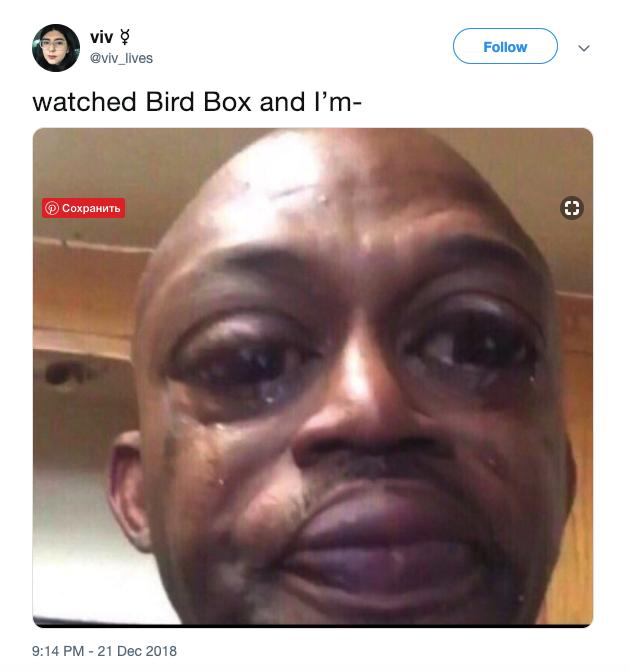 Bird Box Memes With Sandra Bullock Birdbox Movie Memes Riggered