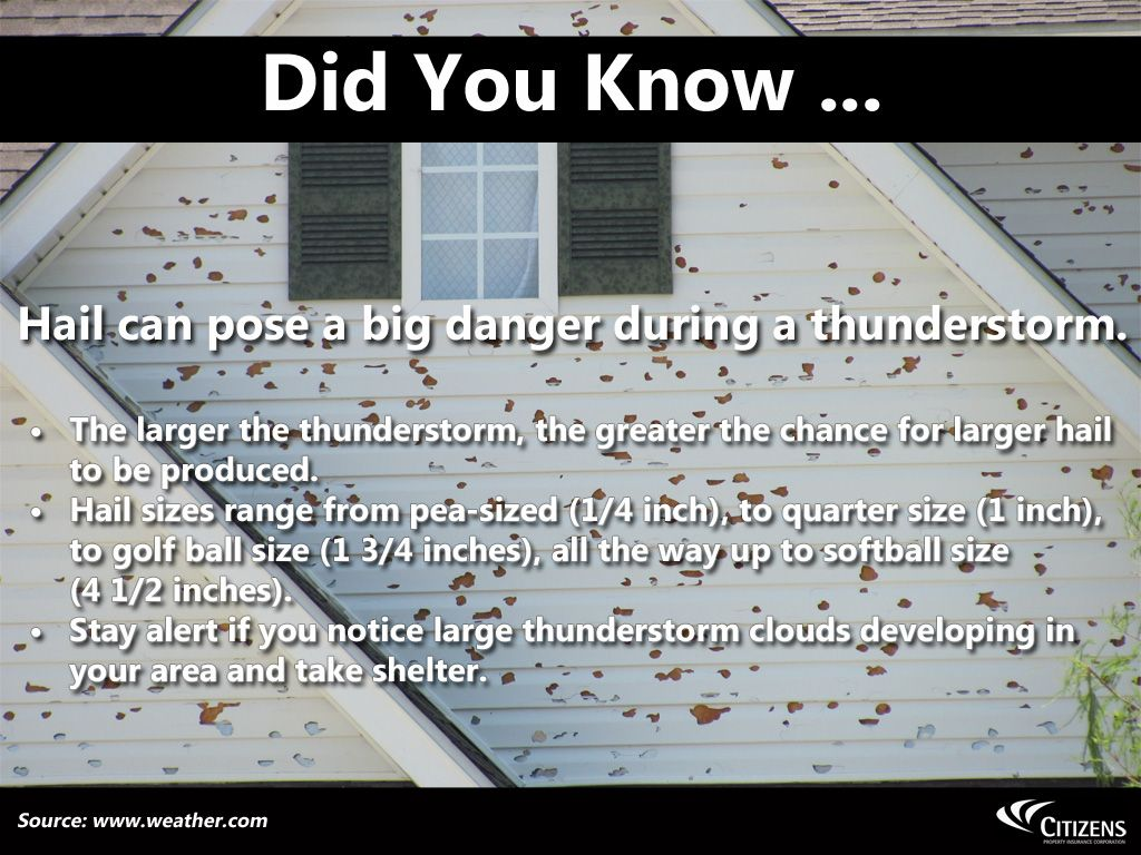 Knowledge Check Hail Damage Greatful
