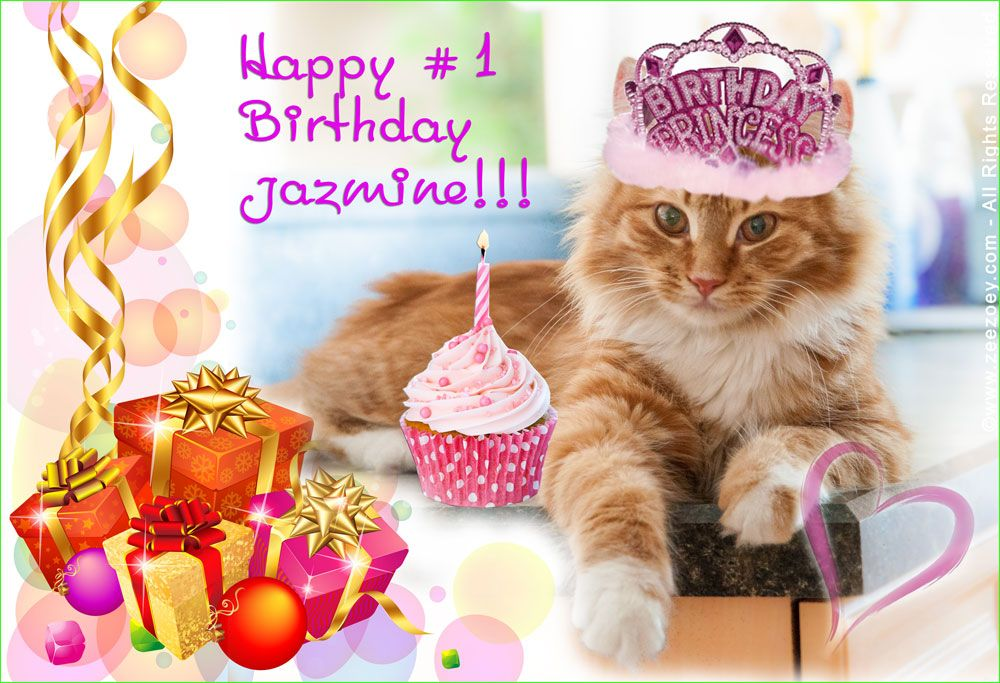 A Purrfect Day To Celebrate Happy First Birthday To Jazmine The