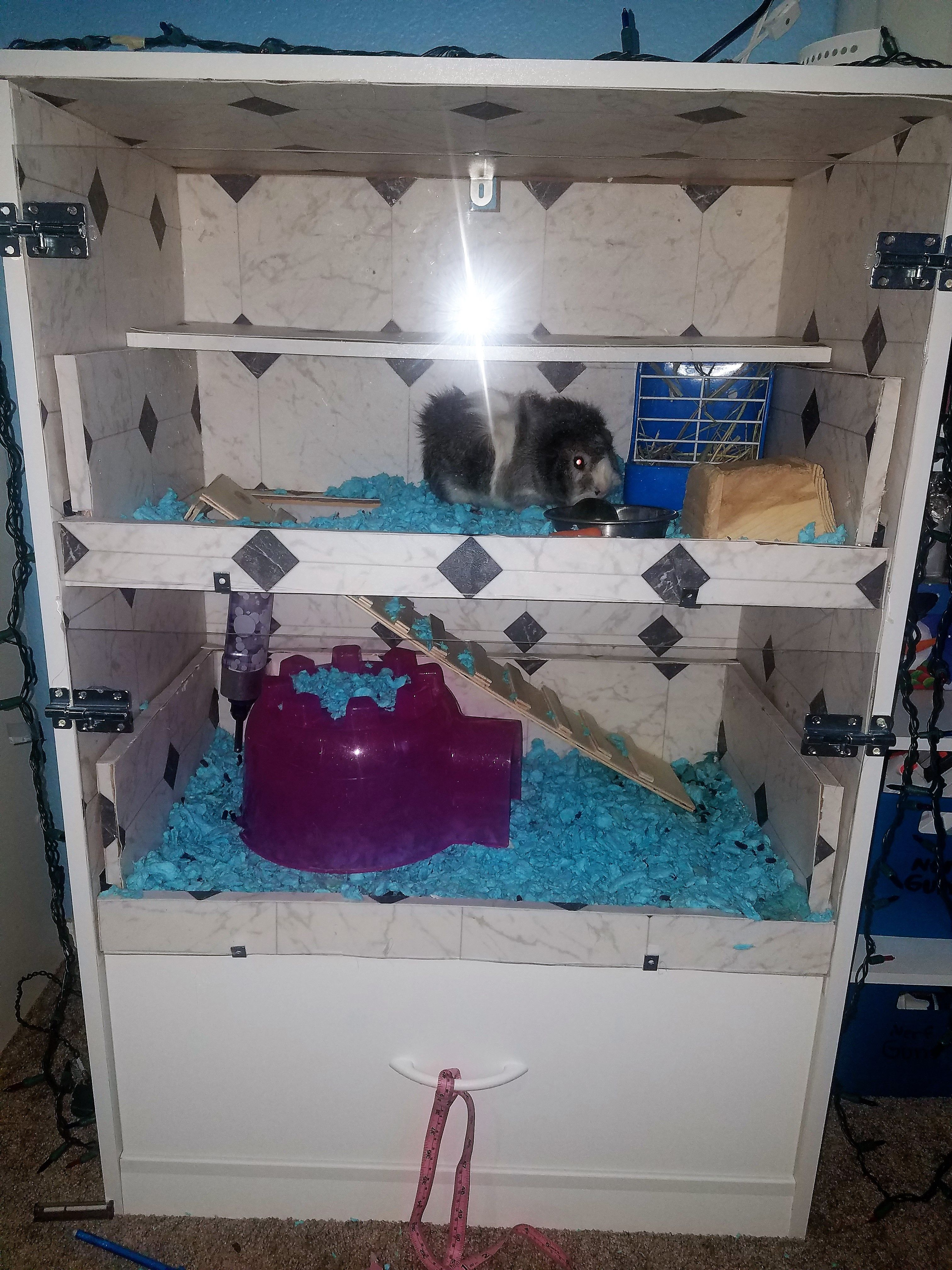 Guinea pig cage condo made from a cheap 4 drawer dresser for Diy guinea pig cage from dresser