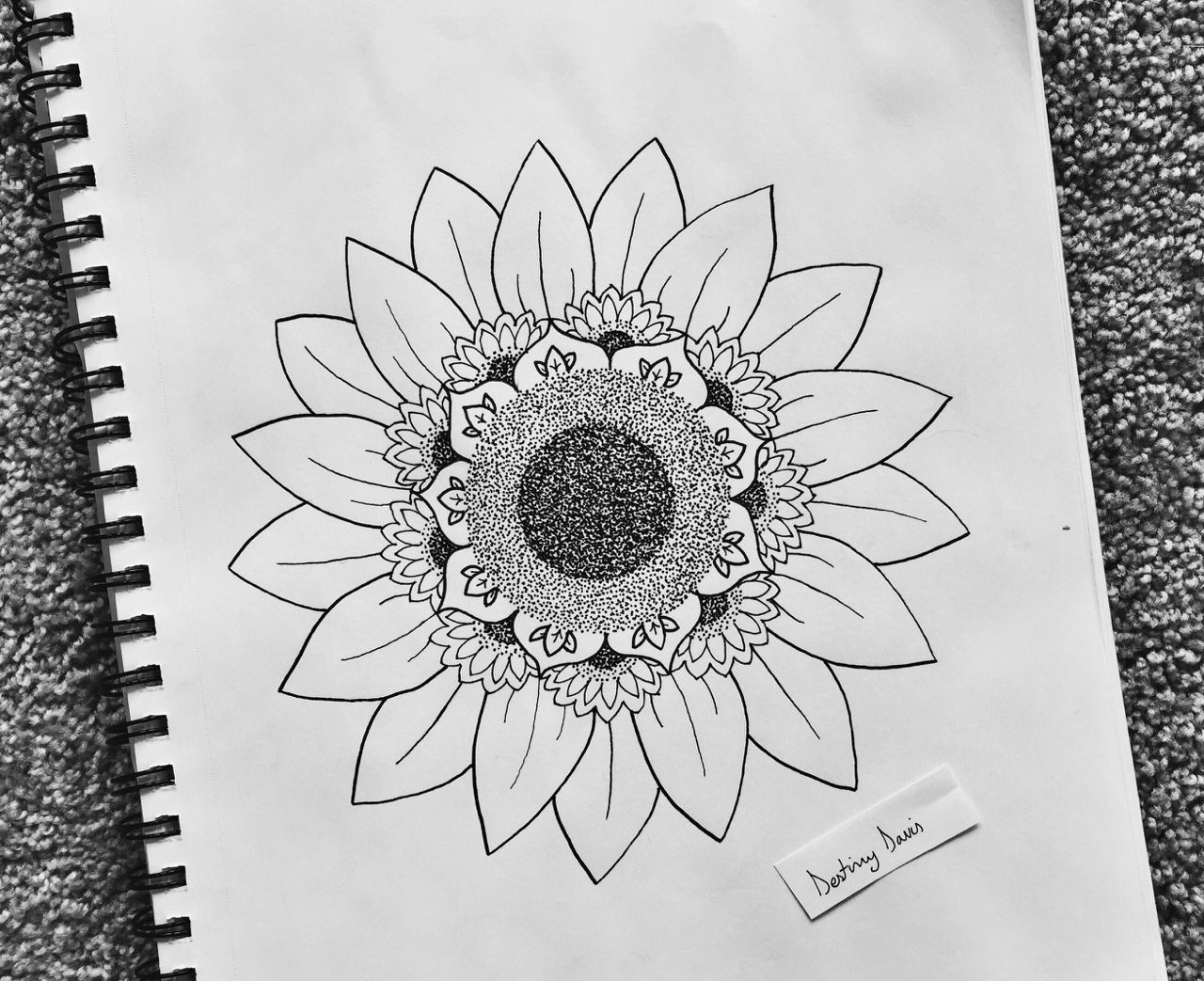 Tumblr Sunflowers Drawing A Wave Of Por Feeling