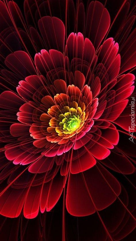 Pin By Beti0x On Tapety Na Telefon Tapeciarnia Pl Purple Flowers Beautiful Flowers Wallpapers Fractal Art