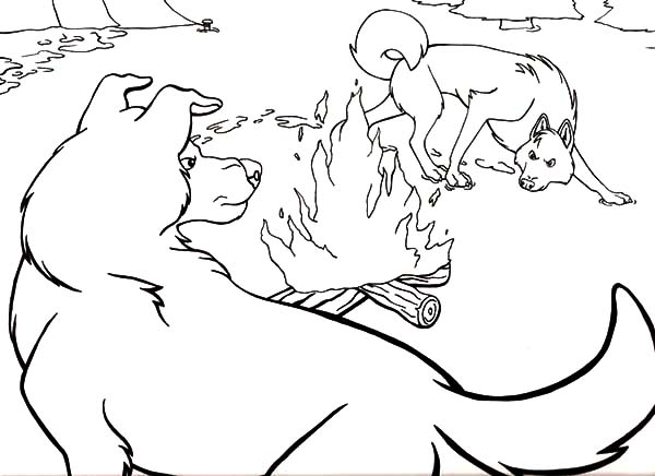 Call Of The Wild Coloring Pages Coloring Sun In 2021 Coloring Pages Call Of The Wild Color
