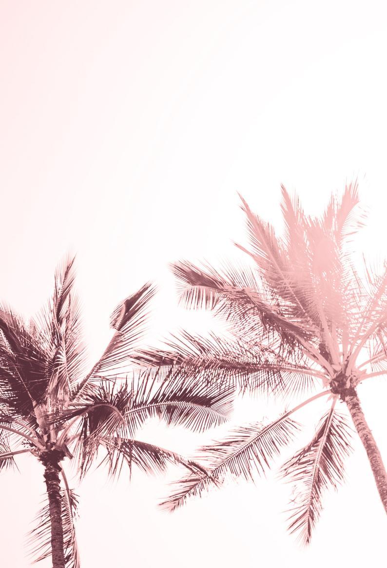Tropical Art Print. Pink Palm Trees Print. Beach Print. Palm Tree Art. Palm Trees Photo. Tropical Wall Art. Light Pink Palm Trees Wall Art