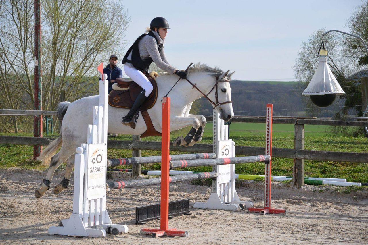 Superbe Ponette De Cso Prete P1 Paarden