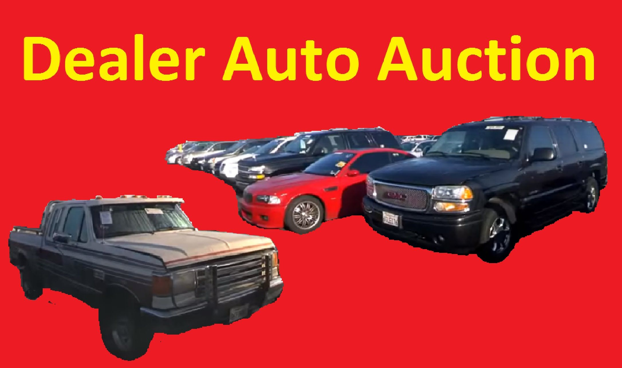 Dealer Only Auto Auction Car Preview Video Wholesale Training 1