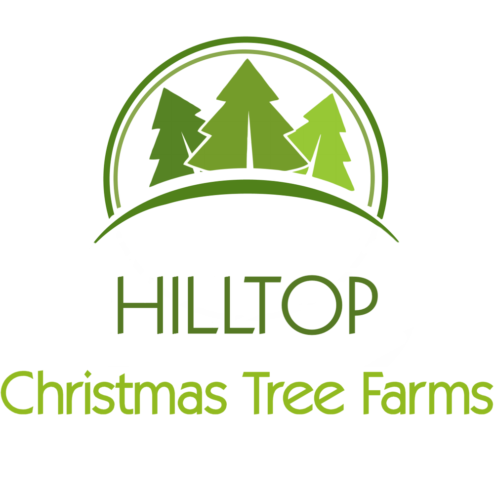 Christmas Tree Delivery From Hilltop: http://hilltop-tree-delivery ...