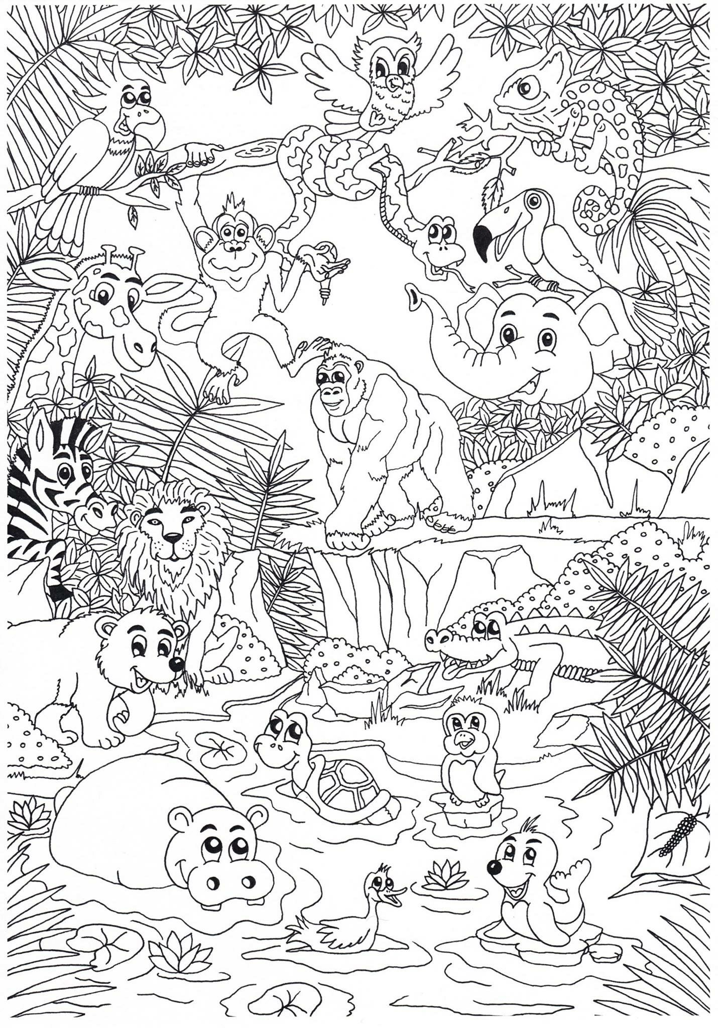 Coloring page (With images) Zoo coloring pages, Jungle