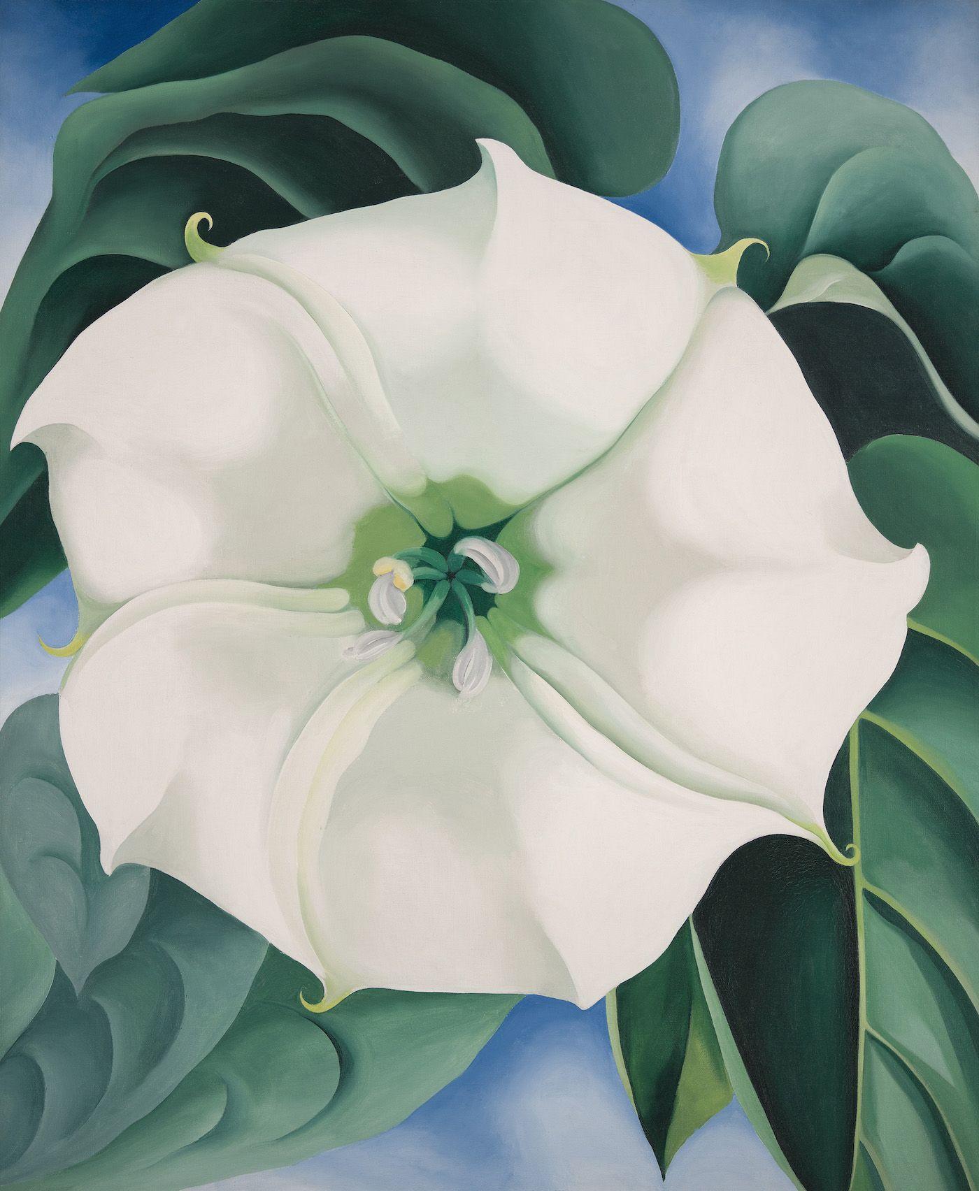 201435 Georgia Okeeffe Jimson Weedwhite Flower No 1 1932 Oil On